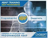 Carrera Programador ABAP