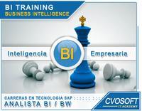 Carrera Analista SAP BI