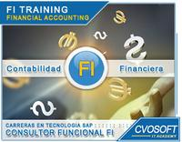 Carrera Consultor SAP FI