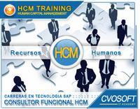 Carrera Consultor SAP HCM