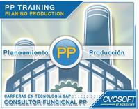 Carrera Consultor SAP PP